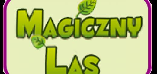 magiczny-las-ferie