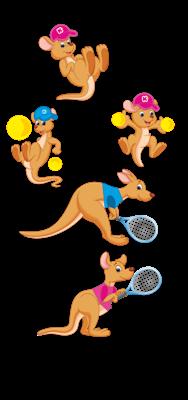 rodzina kangurow